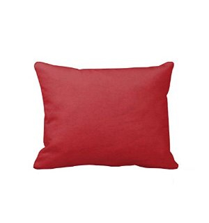 "27"" Red Pillow"